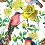 Watercolor birds on the yellow roses Stock Photo