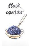 Watercolor black caviar Royalty Free Stock Photo