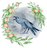 Watercolor black raven with floral peony wreath Hand drawn crow with flowers. Illustration Royalty Free Stock Photos