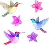 watercolor Bloemen en drie vogels in de lucht vector illustratie