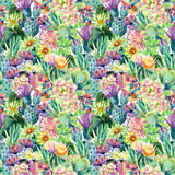 Watercolor blooming cactus background Royalty Free Stock Photos