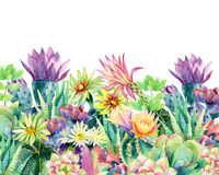 Watercolor blooming cactus background Stock Images