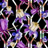Watercolor blue aquilegia flower. Floral botanical flower. Seamless background pattern. Watercolor blue aquilegia flower. Seamless background pattern. Fabric vector illustration
