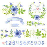 Watercolor blue daisy floral decor set with numbers Royalty Free Stock Images