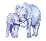 Family of elephants. Watercolor. Watercolor blue elephants. Illustration for children`s publications. Family Stock Images