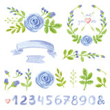 Watercolor blue floral decor set with numbers Stock Image