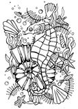 Hand drawn coloring page sea horse. Stock Photography