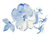 Watercolor blue flowers Royalty Free Stock Photography