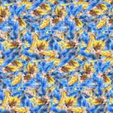 Watercolor blue jay yellow parrot bird feather seamless pattern texture background.  Royalty Free Stock Photography