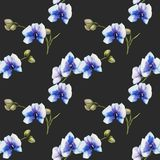 Watercolor blue orchids seamless pattern. Hand painted on a dark background Stock Photo
