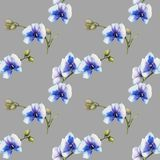 Watercolor blue orchids seamless pattern. Hand painted on a grey background Royalty Free Stock Photos