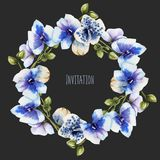 Watercolor blue orchids wreath. Hand painted on a dark background Stock Images