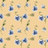 Watercolor blue spotted orchids seamless pattern. Hand painted on a peach background Royalty Free Stock Photo