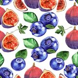 Watercolor blueberries and fig seamless pattern on white background. Watercolor blueberries and fig  illustration, on white background Royalty Free Stock Image