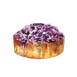 Watercolor blueberry cake with coconut. Watercolor blueberry cake for card, menu, postcard and illustration. Isolated Stock Image