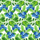 Watercolor blueberry pattern Stock Images