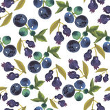 Watercolor blueberry  seamless pattern. Watercolor vintage blueberry seamless pattern Royalty Free Stock Photography