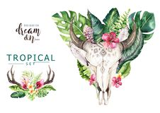 Watercolor bohemian cow skull and tropic palm leaves. Western deer mammals. Tropical deer boho decoration print antlers Royalty Free Stock Image