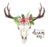 Watercolor bohemian cow skull and tropic palm leaves. Western deer mammals. Tropical deer boho decoration print antlers Stock Photography