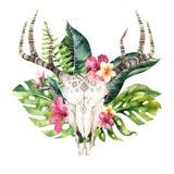 Watercolor bohemian cow skull and tropic palm leaves. Western deer mammals. Tropical deer boho decoration print antlers stock illustration