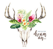 Watercolor bohemian cow skull and tropic palm leaves. Western deer mammals. Tropical deer boho decoration print antlers Stock Photos