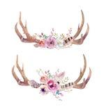 Watercolor Bohemian Deer Horns. Western Mammals. Watercolour Hip Royalty Free Stock Photo