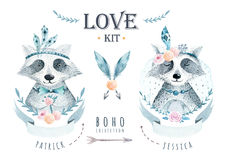 Watercolor boho floralelements with raccoon. Watercolour bohemia. Big collection of different hand drawn floral elements on chalkboard background Stock Photo