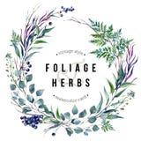 Watercolor Boho Foliafe Wreath Stock Photos