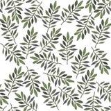 Watercolor botanical background. stock illustration