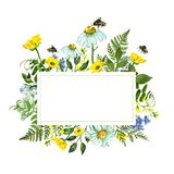 Watercolor botanical border with colorful yellow and blue wild flowers, green leaves, herbs and honey bee. Summer holiday card