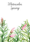Watercolor botanical elements Stock Photos
