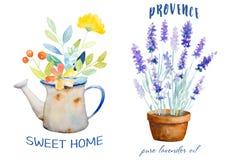 Watercolor botanical Logos Royalty Free Stock Image
