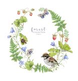Watercolor botanical wreath with berry and bird royalty free stock photo