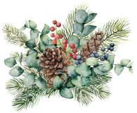 Watercolor bouquet with eucalyptus leaves, cone, fir branch and berries. Hand painted green brunch, red and blue berries. Isolated on white background royalty free illustration