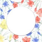 Watercolor bouquet of flowers poppy, cornflower stock illustration