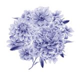 Watercolor bouquet with flowers. Dahlia. Anemone. Peony. Stock Photography