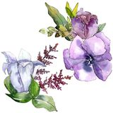 Watercolor bouquet flowers. Floral botanical flower. Isolated illustration element. Full name of the plant: sunflower, peony,flax. Aquarelle wildflower for royalty free stock images