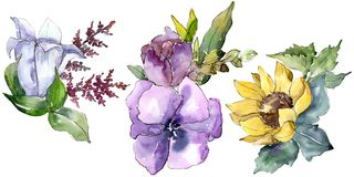 Watercolor bouquet flowers. Floral botanical flower. Isolated illustration element. Full name of the plant: sunflower, peony,flax. Aquarelle wildflower for stock illustration