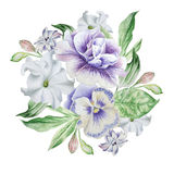 Watercolor bouquet with flowers. Petunia. Pansies. Stock Images