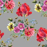 Watercolor bouquet flowers with tulip. Seamless pattern on a gray background. royalty free illustration