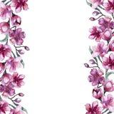 Watercolor bouquet of pink flower. Floral botanical flower. Frame border ornament square. Aquarelle wildflower for background, texture, wrapper pattern, frame stock illustration