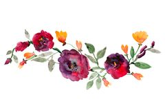 Watercolor Bouquet On White Background Royalty Free Stock Images