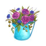 Watercolor bouquet of spring flowers in a watering can. royalty free illustration