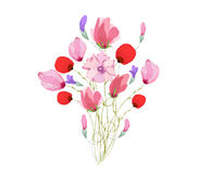 Watercolor Bouquet of tulips in Pink Royalty Free Stock Photos