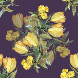 Watercolor bouquet yellow tulips on a violet background. Watercolor image violet background bouquet flowers  handmade  seamless pattern Royalty Free Stock Photography