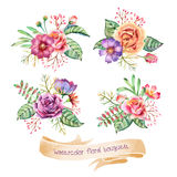 Watercolor Bouquets Royalty Free Stock Image