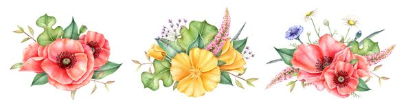 Watercolor bouquets of wildflowers isolated on white background. Hand painted illustration. royalty free illustration