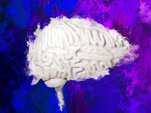 Watercolor brain. Creativity concept. Cerebellum. Human brain 3D illustration Stock Photo