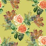Watercolor flowers rose with leaves maple. Floral seamless pattern on a olive background. Watercolor  branch  floral seamless pattern design illustration Royalty Free Stock Photography