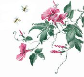 Watercolor branch with pink flowers vector illustration